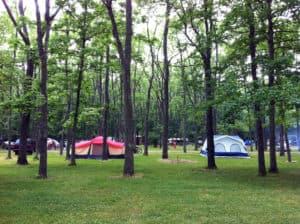 Hueston Woods State Park camping In Ohio