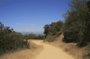 Hiking in Los Angeles - Wilacre Park
