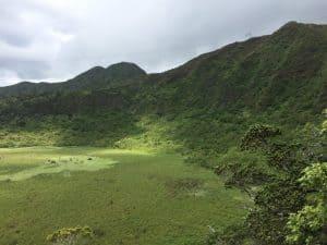 Oahu Hiking Spots - Ka' au Crater Hike