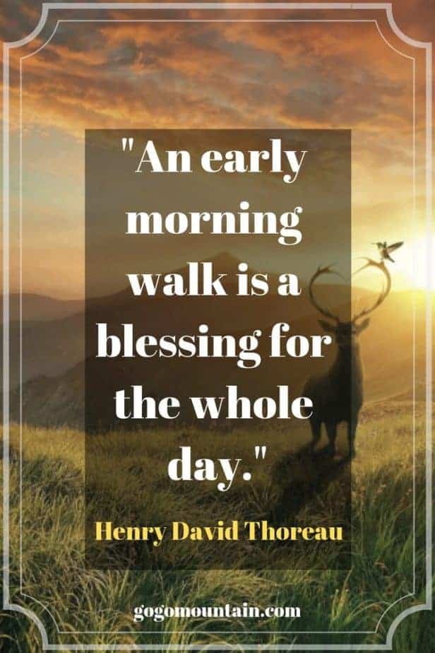 An early morning walk is a blessing for the whole day._ Henry David Thoreau