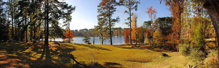 Texas Hiking Spots Davy Crockett National Forest