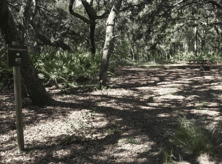 Camping in Florida - Serenova Tract