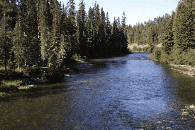 Idaho Hiking Trails- Priest River - Upper Priest Lake Trail