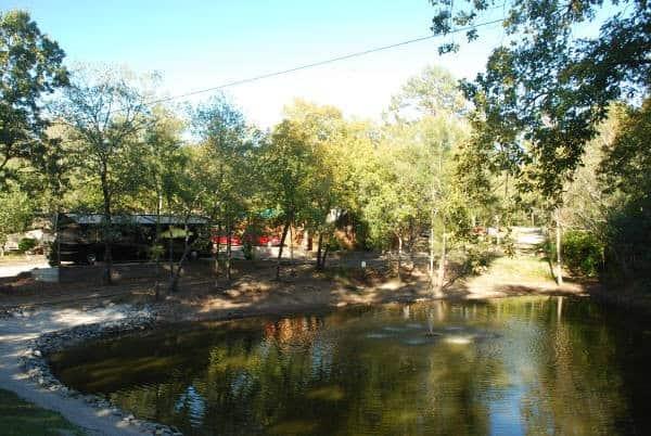 Best RV Campsites in Arkansas