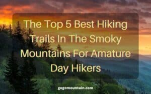 The Top 5 Best Hiking Trails In The Smoky Mountains For Amature Day Hikers