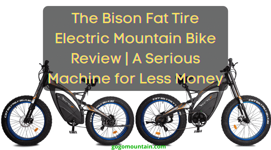 The Bison Fat Tire Electric Mountain Bike Review