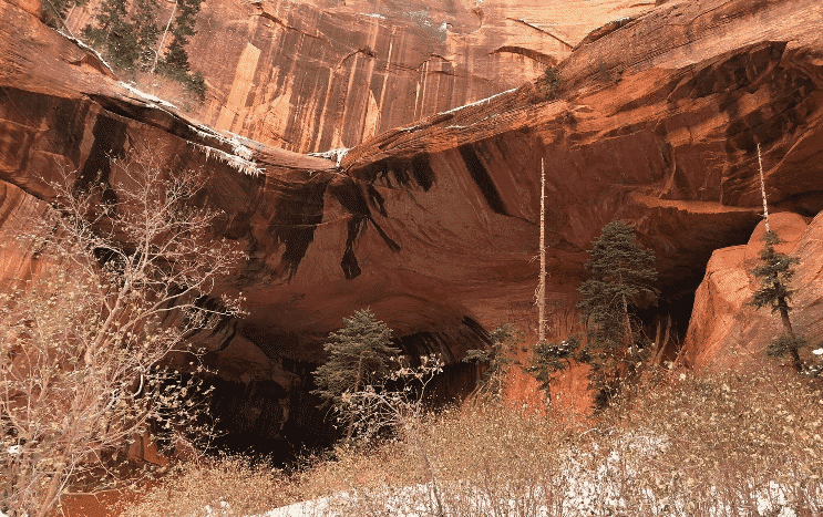 Best Hiking Trails In Zion National Park