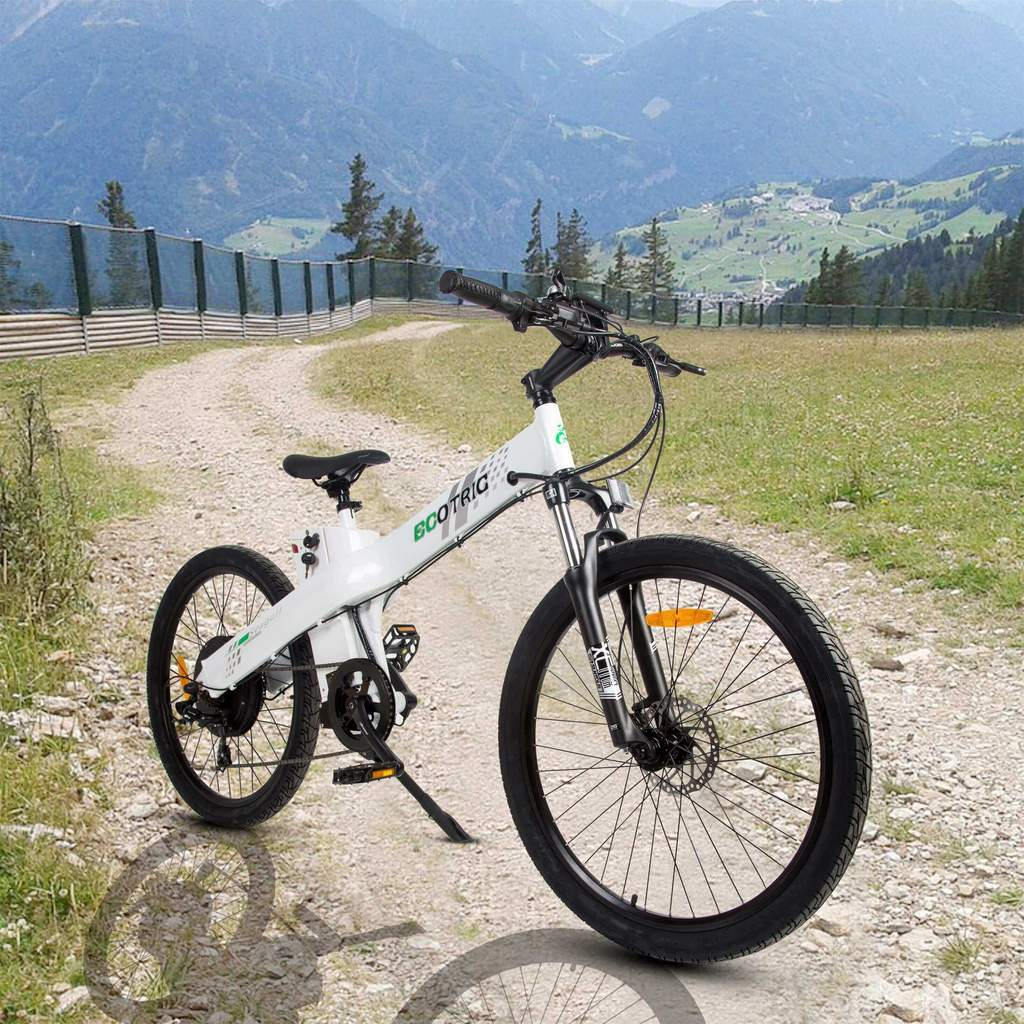 Ecotric Seagull Fat Tire Electric Mountain Bike Review