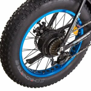 Ecotric Dolphin Fat Tire Electric Mountain Bike Review
